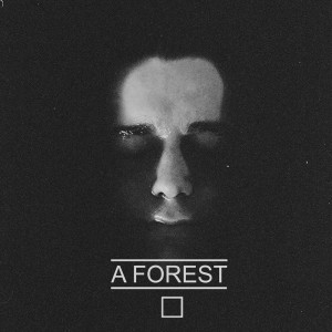 "Lazy Sunday: A Forest – ""Swan"""